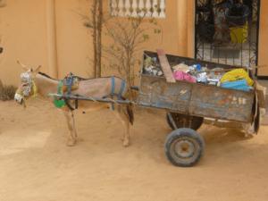Dump Truck Liability